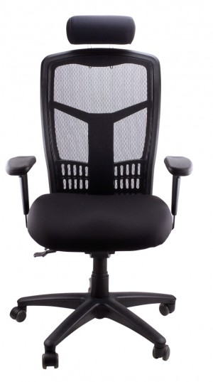 MESH DELUXE EXECUTIVE CHAIR BLACK  (price excludes gst)
