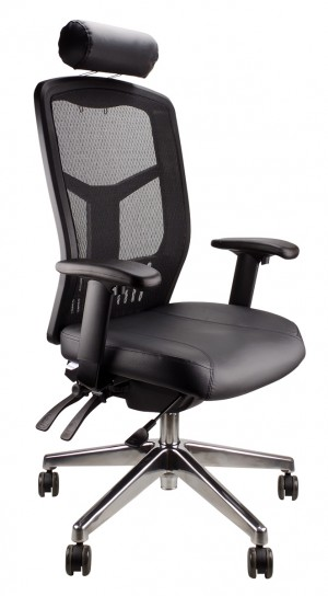 MESH DELUXE PRO LEATHER EXECUTIVE CHAIR WITH POLISHED BASE  (price excludes gst)