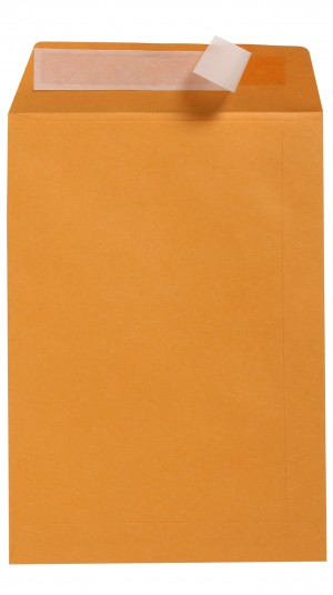 ENVELOPES Cumberland GOLD C5 229 x 162 Peel-n-Seal (Box 500) 606322  (price excludes gst)