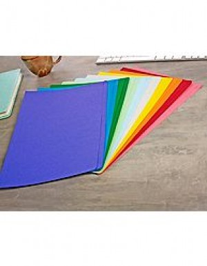 MANILLA FOLDERS A4 ASSORTED COLOURS Box 100 (price excludes GST)